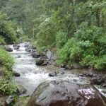 air-terjun-tretes-3